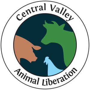 CVAL Logo Text JPEG